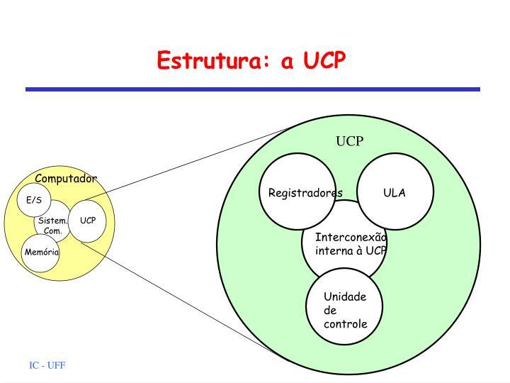Estrutura: a UCP