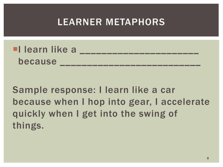 Learner Metaphors