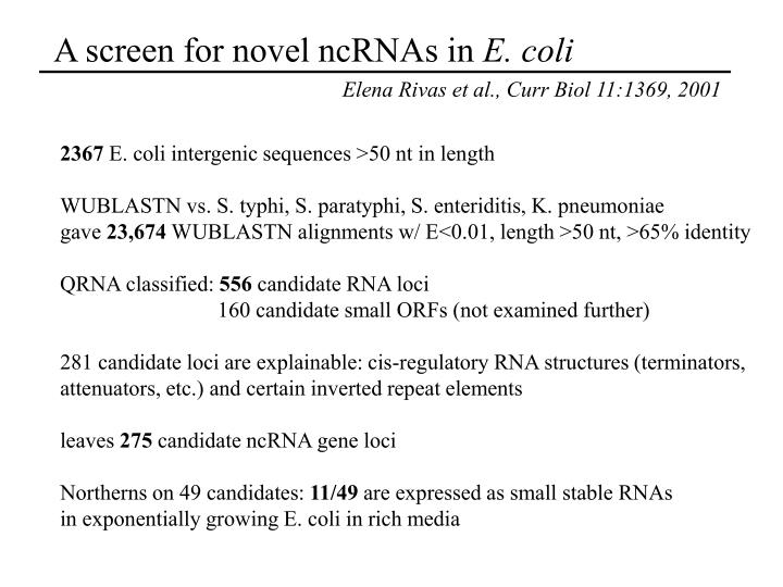 A screen for novel ncRNAs in