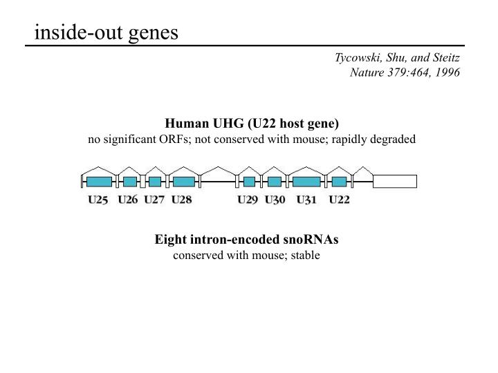 inside-out genes
