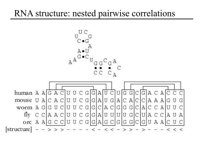 RNA structure: nested pairwise correlations