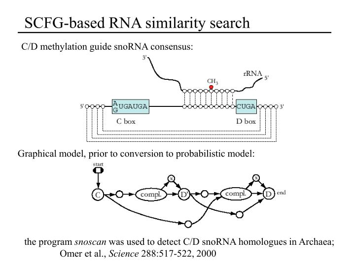 SCFG-based RNA similarity search