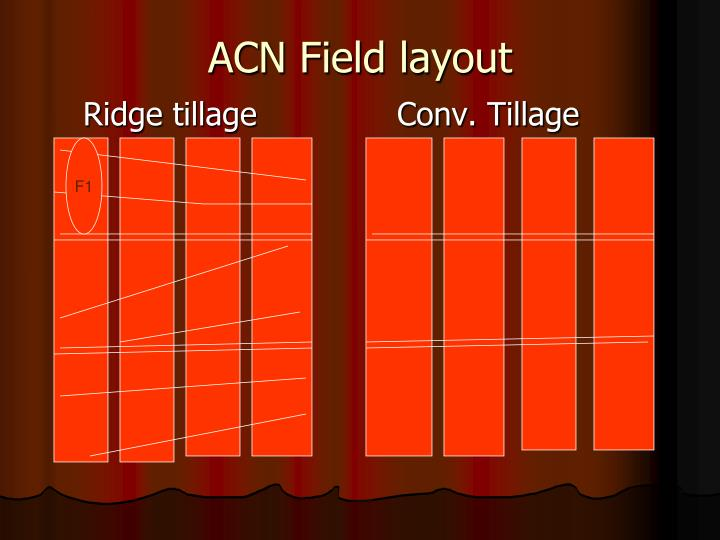ACN Field layout