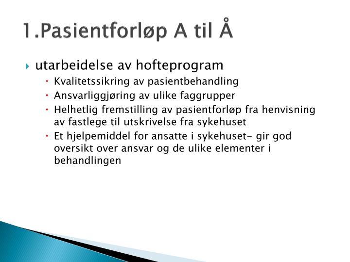 1.Pasientforløp A til Å