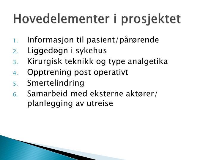 Hovedelementer i prosjektet