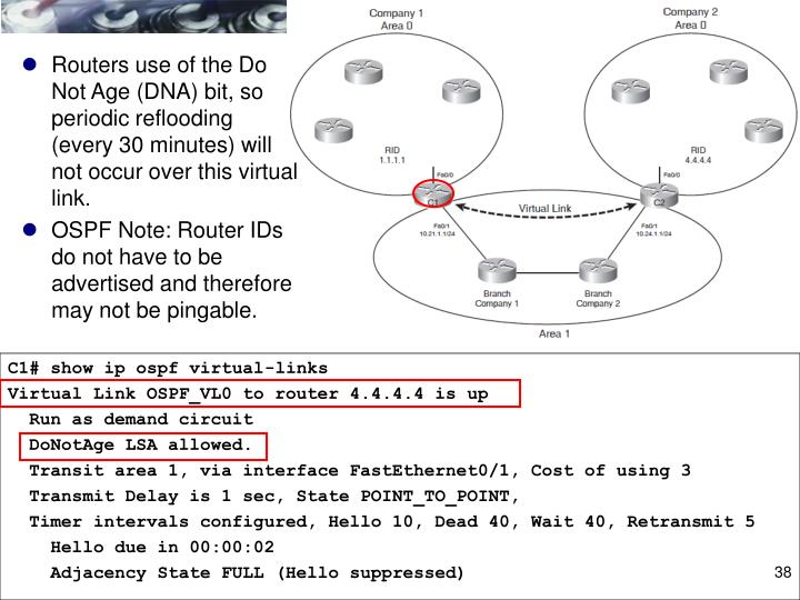Routers use of the Do Not Age (DNA) bit, so periodic reflooding (every 30 minutes) will not occur over this virtual link.