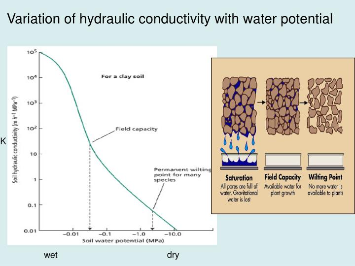 Conductivity Of Water : Ppt modelling land surface in a climate model powerpoint