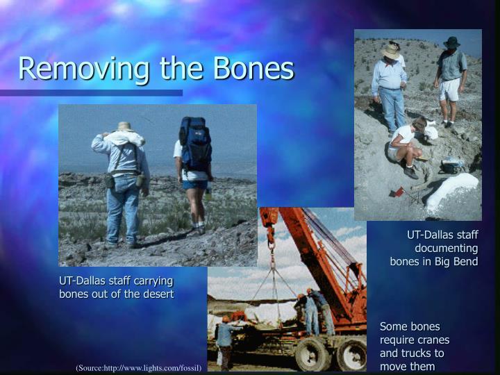 Removing the Bones