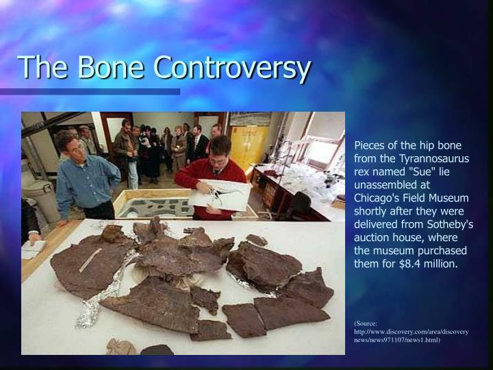 The Bone Controversy