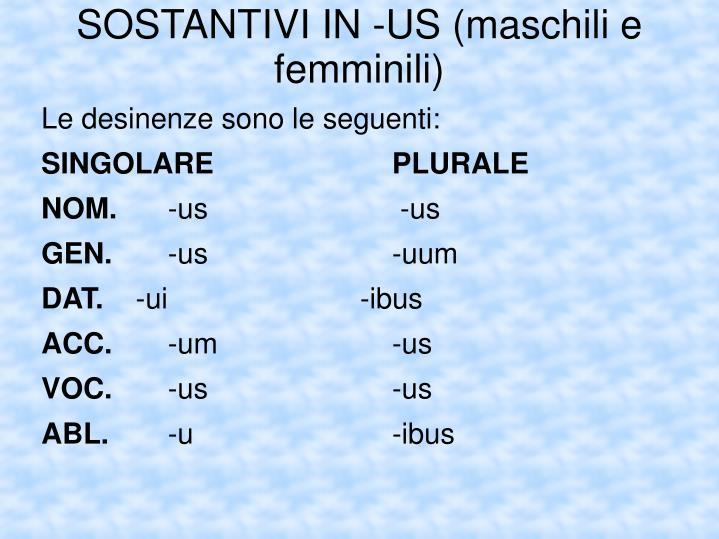 SOSTANTIVI IN -US (maschili e femminili)