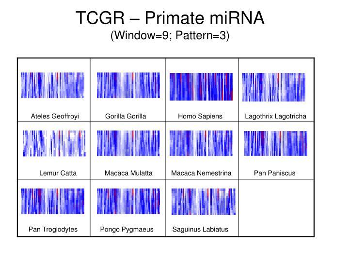 TCGR – Primate miRNA