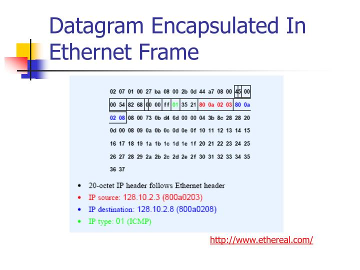 Datagram Encapsulated In Ethernet Frame