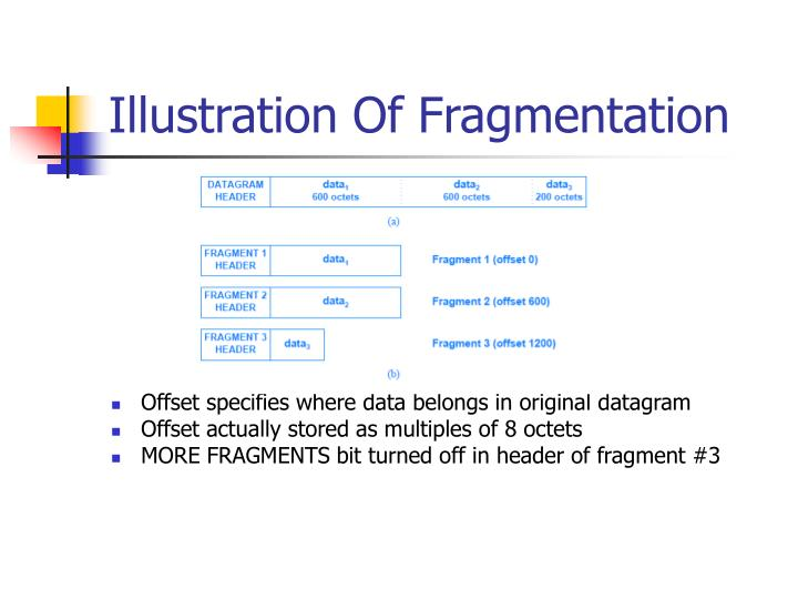 Illustration Of Fragmentation