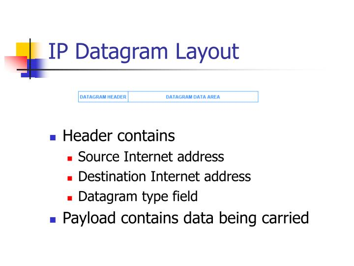 IP Datagram Layout