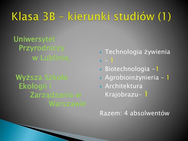 Klasa 3B – kierunki studiów (1)