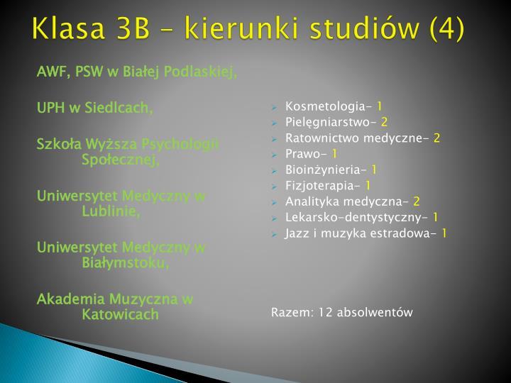 Klasa 3B – kierunki studiów (4)