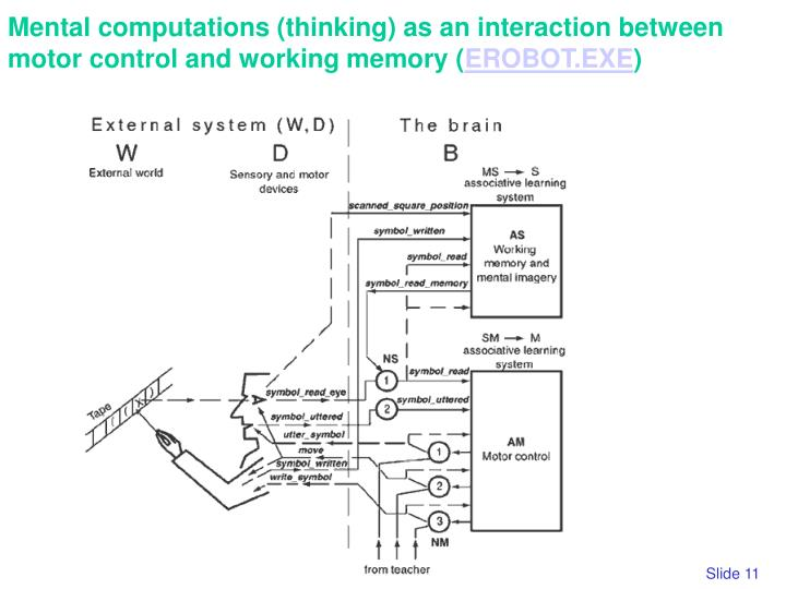 Mental computations (thinking) as an interaction between motor control and working memory (