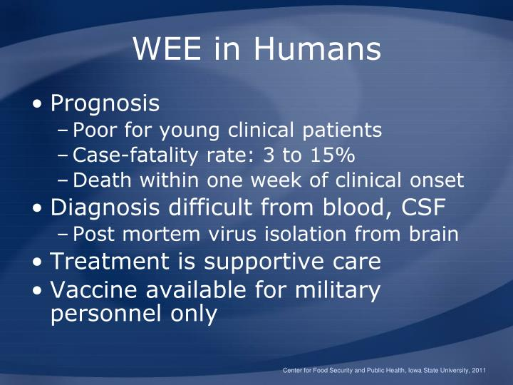 WEE in Humans