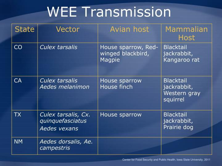 WEE Transmission