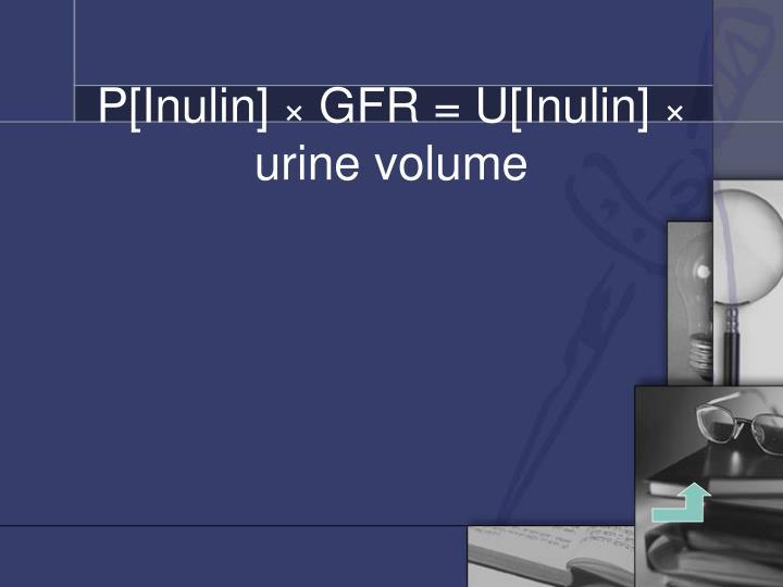 P[Inulin]