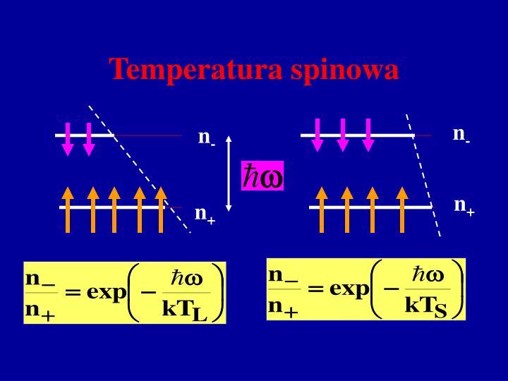 Temperatura spinowa