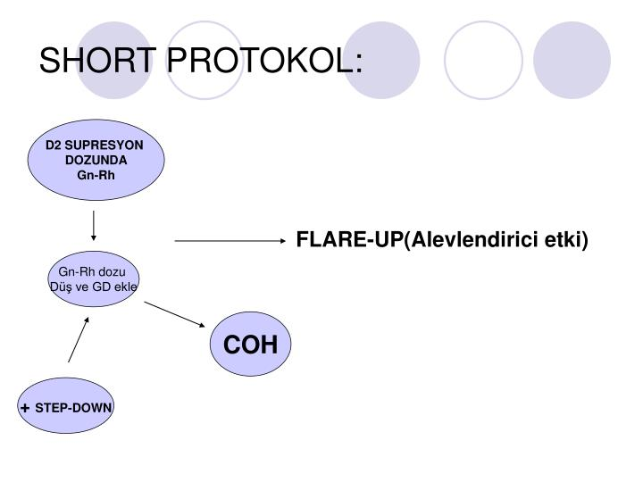 SHORT PROTOKOL: