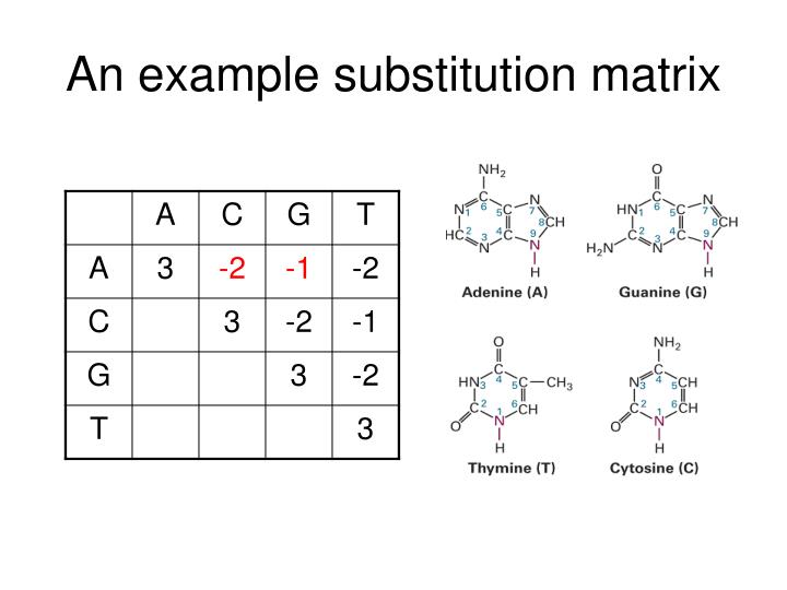 An example substitution matrix
