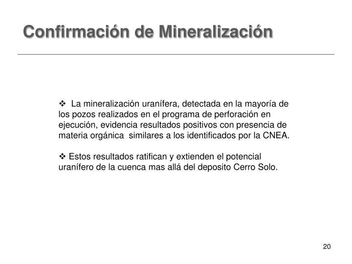 Confirmación de Mineralización