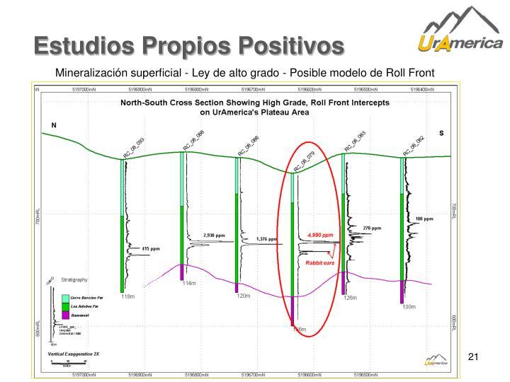 Estudios Propios Positivos