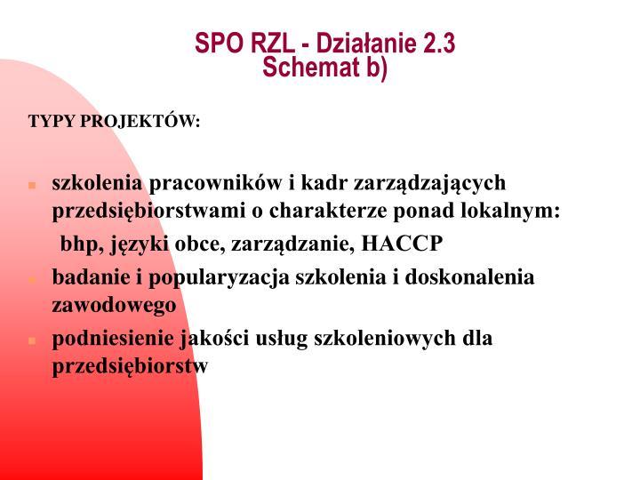 SPO RZL - Działanie 2.3