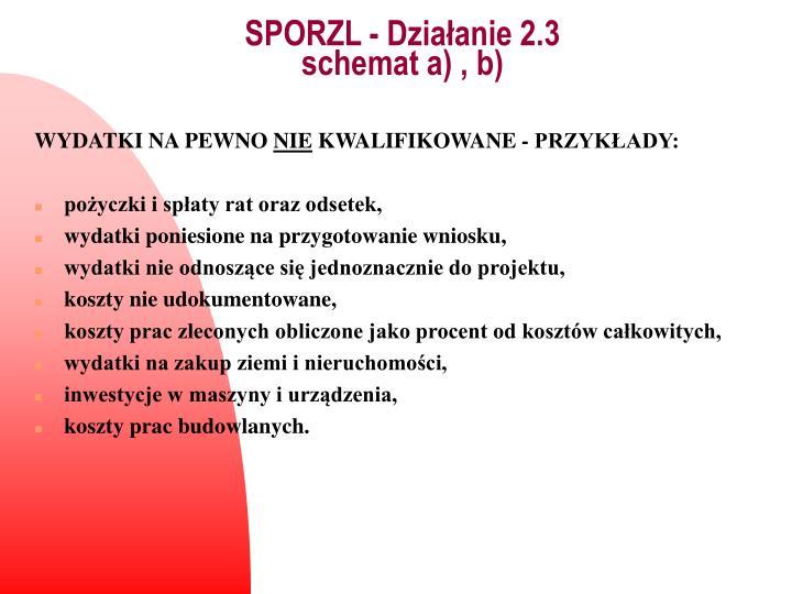 SPORZL - Działanie 2.3