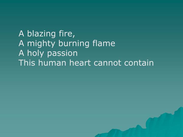 A blazing fire,