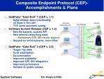 composite endpoint protocol cep accomplishments plans