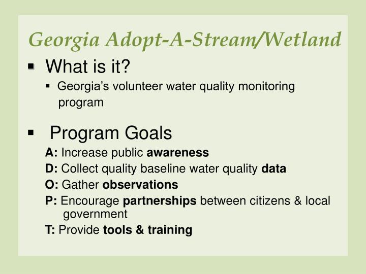 Georgia Adopt-A-Stream/Wetland