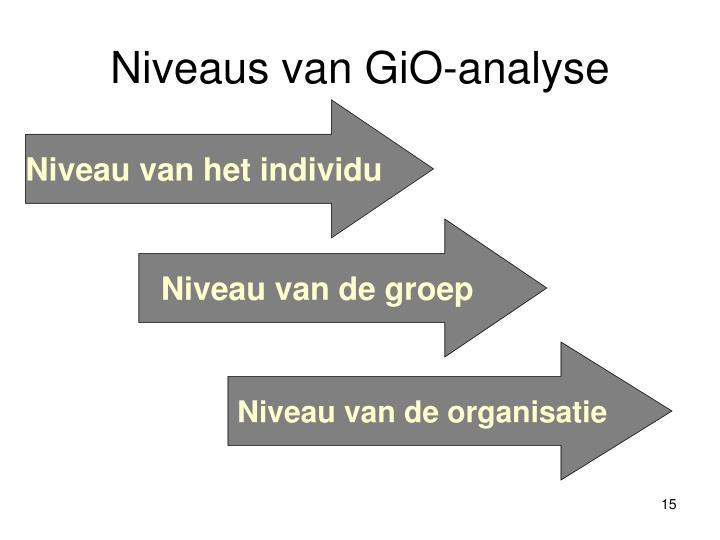 Niveaus van GiO-analyse