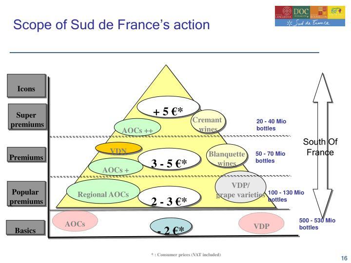 Scope of Sud de France's action