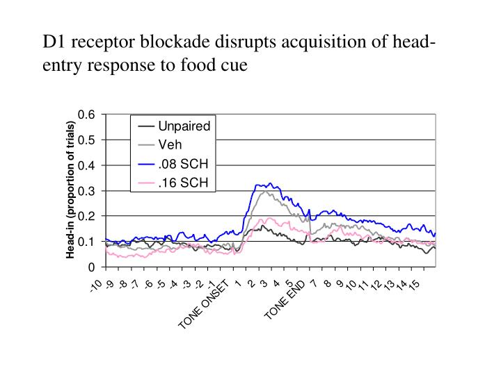 D1 receptor blockade disrupts acquisition of head-entry response to food cue