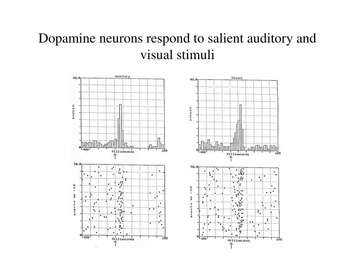 Dopamine neurons respond to salient auditory and visual stimuli