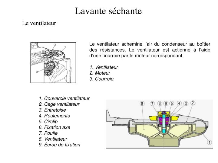Lavante séchante
