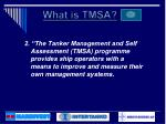 what is tmsa1