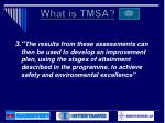what is tmsa2
