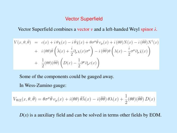 Vector Superfield