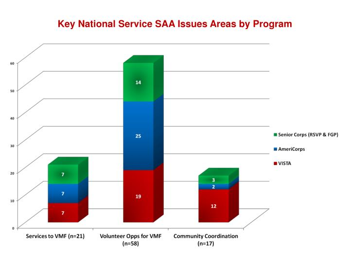 Key National Service SAA Issues Areas by Program