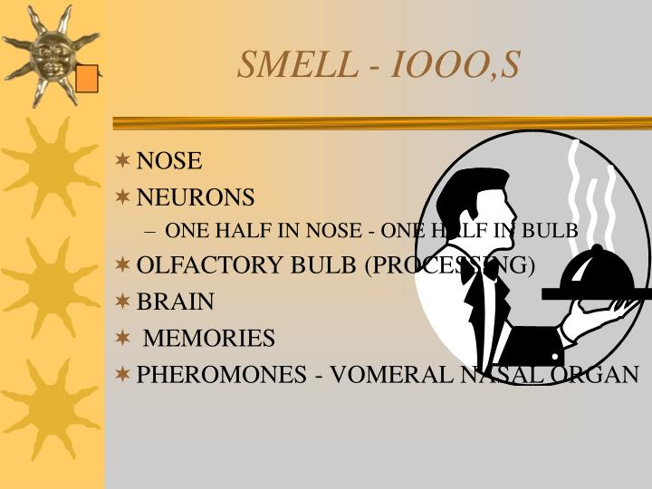 SMELL - IOOO,S
