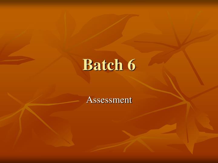 batch 6