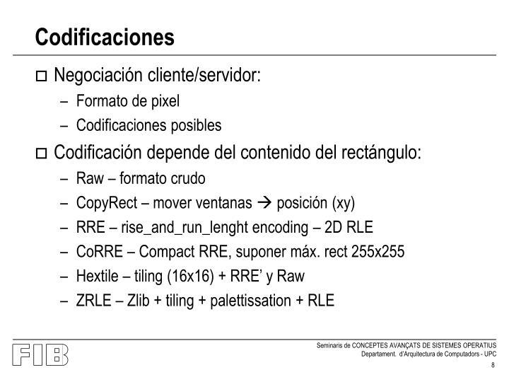 Codificaciones