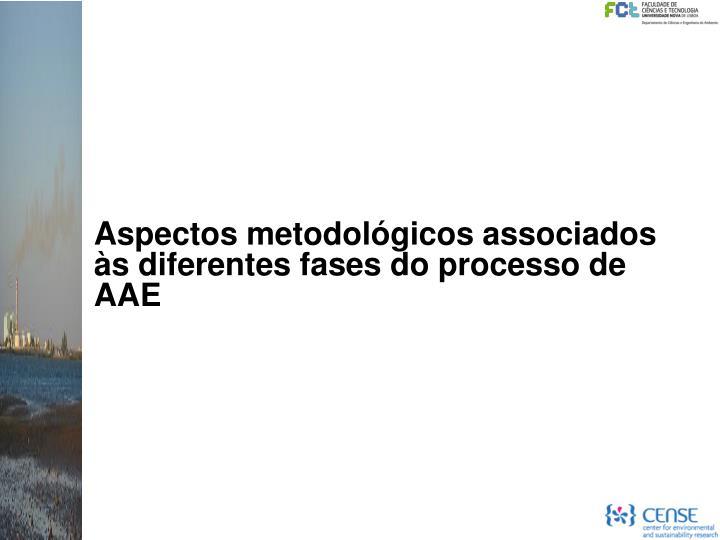 Aspectos metodológicos associados às diferentes fases do processo de AAE