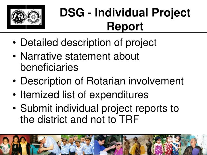 DSG - Individual Project Report