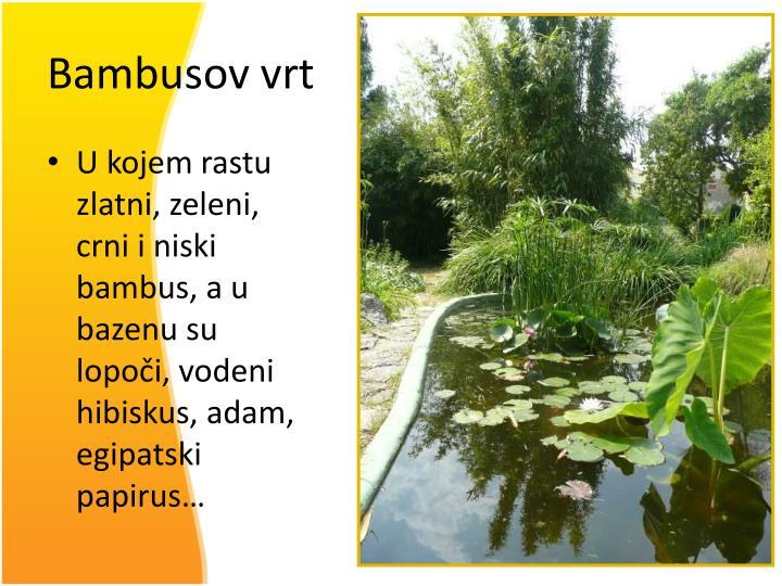Bambusov vrt