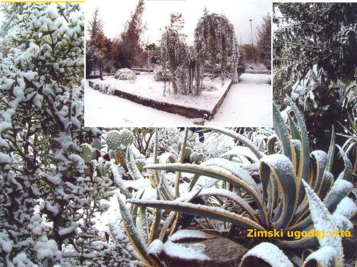 Zimski ugođaj vrta